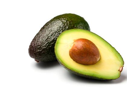 criando-labrador-frutas-e-vegetais-proibidos-cachorros-galho-abacate
