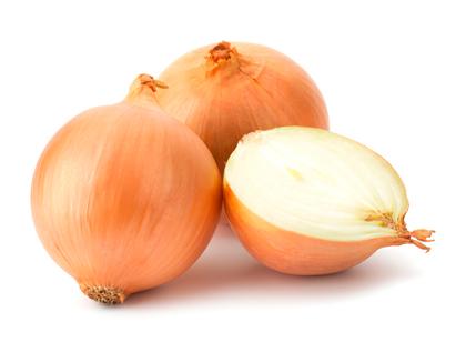 criando-labrador-frutas-e-vegetais-proibidos-cachorros-galho-cebola